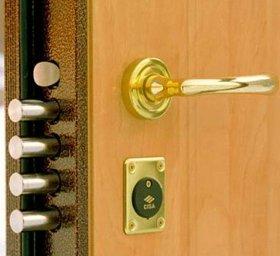железные двери в Бронницах